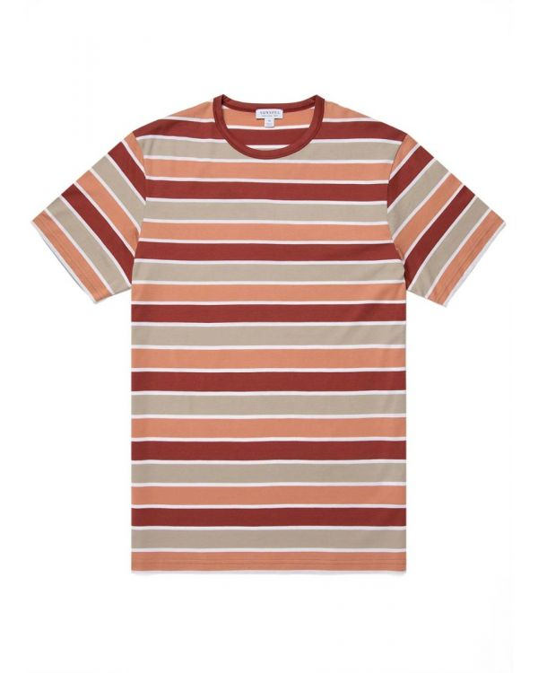Men's Classic Cotton Bold Stripe T-Shirt in Brick/Taupe