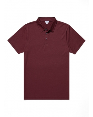 Men's Cotton Jersey Polo Shirt in Oxblood