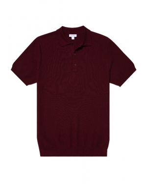 Men's Cotton Fine Texture Knitted Polo Shirt in Oxblood